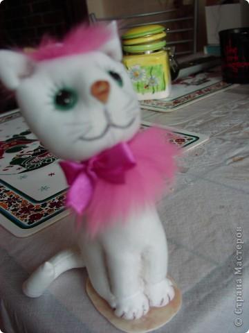 Всем  привет,  я  кот  ВАСЬКА фото 13