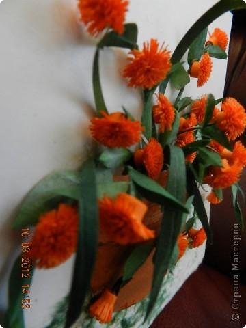 Цветы-Рыжики  фото 3