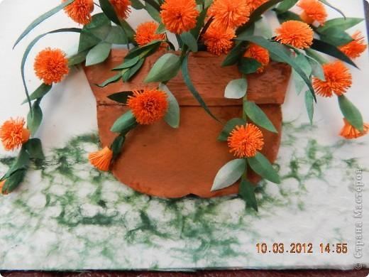 Цветы-Рыжики  фото 6