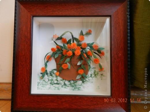 Цветы-Рыжики  фото 7