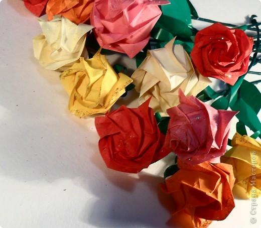 Розы Кавасаки ( 13 шт.) фото 2