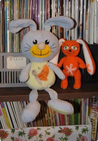 Нежный,ласковый зайчишка,в этот мир пришёл к детишкам. фото 6