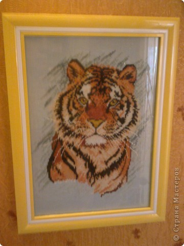 Тигруша. фото 2