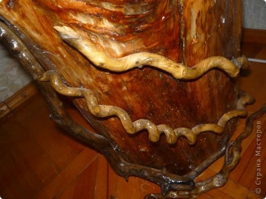 Высушенный и обработанный корень многолетнего дерева. фото 10