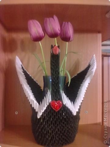 эти лебеди сделаны на основе черного принца только меньше в 2 раза фото 6