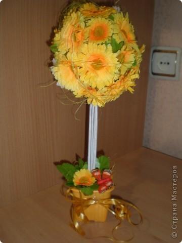 Коллегам по работе приготовила в подарок ромашковый лес фото 6