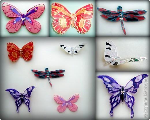 Пришла весна, бабочки стали просыпаться.  фото 1
