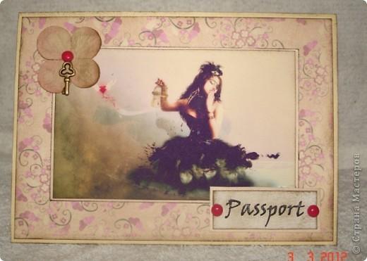 мужская обложка на паспорт фото 2