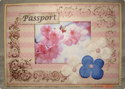 мужская обложка на паспорт фото 5