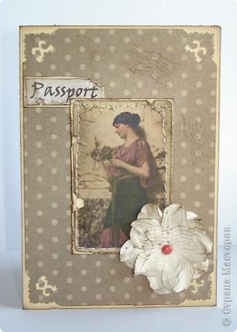 мужская обложка на паспорт фото 10