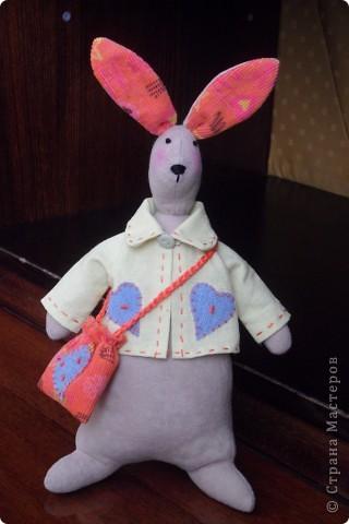 Кролик Сеня фото 1