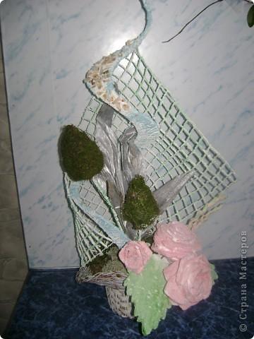 Цветок на кухню фото 4