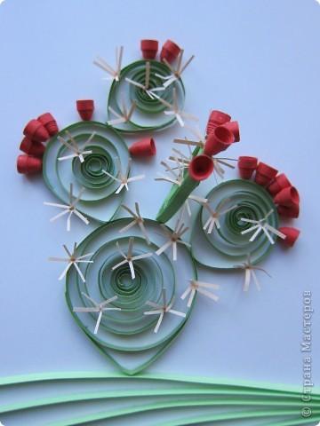 На сей раз представляю Вашему вниманию не гламурные цветочки, а колючий кактус - опунцию. Делала по книге про австралийские садовые растения в квиллинге. фото 1