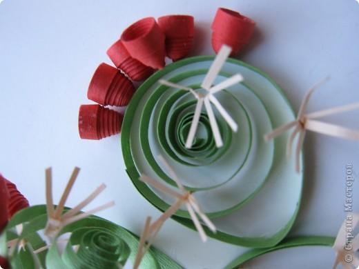 На сей раз представляю Вашему вниманию не гламурные цветочки, а колючий кактус - опунцию. Делала по книге про австралийские садовые растения в квиллинге. фото 4