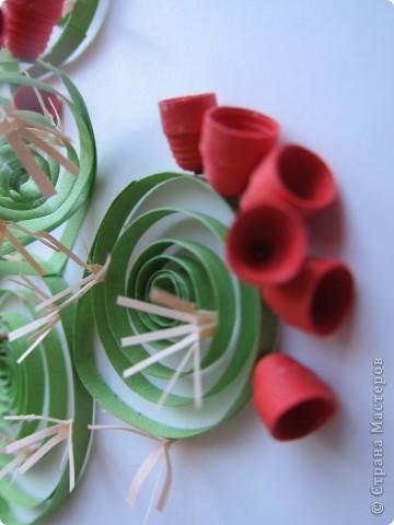 На сей раз представляю Вашему вниманию не гламурные цветочки, а колючий кактус - опунцию. Делала по книге про австралийские садовые растения в квиллинге. фото 5