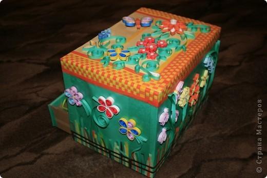 Общий вид коробочки фото 3