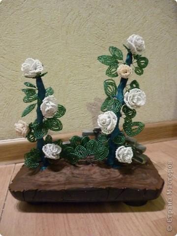 Задумала сделать куст розы... Делала, делала, а в конце оказалось что белого бисера у меня не хватает на мою задумку. Пришлось две розочки сделать кремовые... Это передний план... фото 1