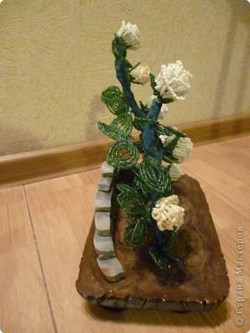 Задумала сделать куст розы... Делала, делала, а в конце оказалось что белого бисера у меня не хватает на мою задумку. Пришлось две розочки сделать кремовые... Это передний план... фото 3
