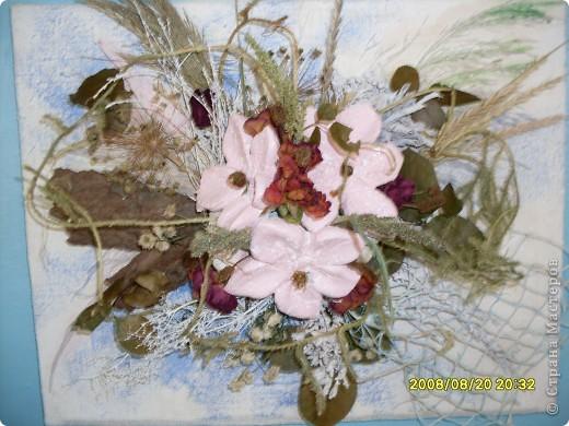 Цветок на кухню фото 6