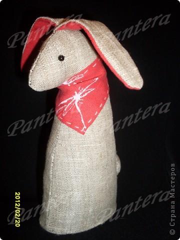 Начавшийся отпуск я отметила появлением вот этого кролика.   фото 1