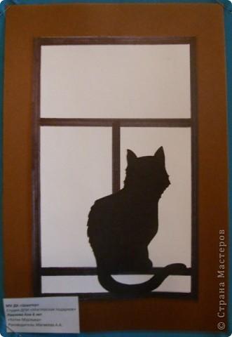 1 марта-всемирный день кошек. фото 2