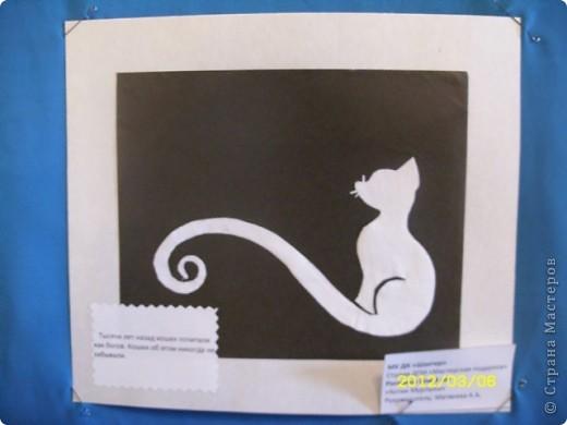 1 марта-всемирный день кошек. фото 4