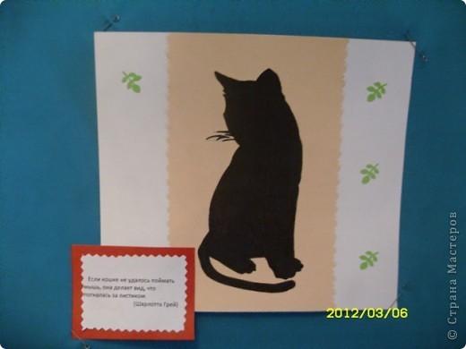 1 марта-всемирный день кошек. фото 6