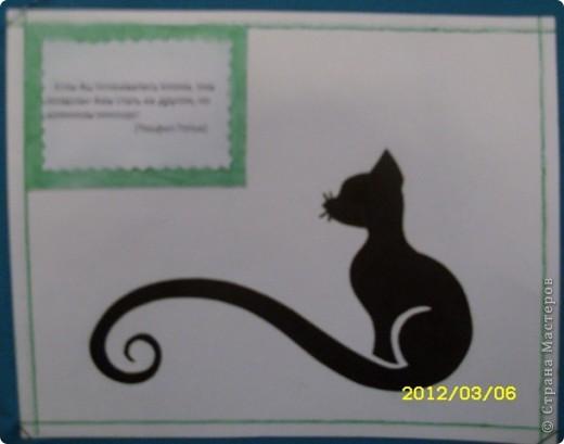 1 марта-всемирный день кошек. фото 7