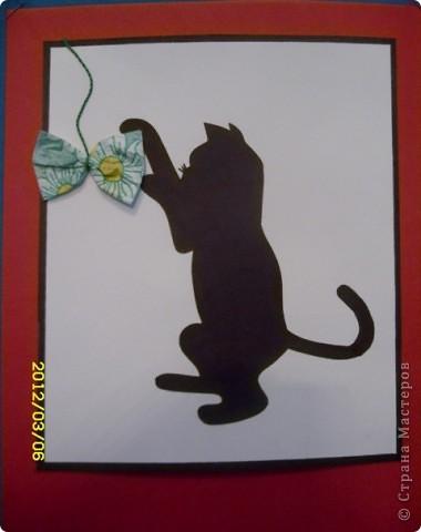 1 марта-всемирный день кошек. фото 8