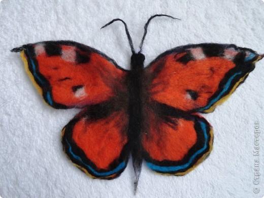 бабочка крапивница из шерсти фото 2