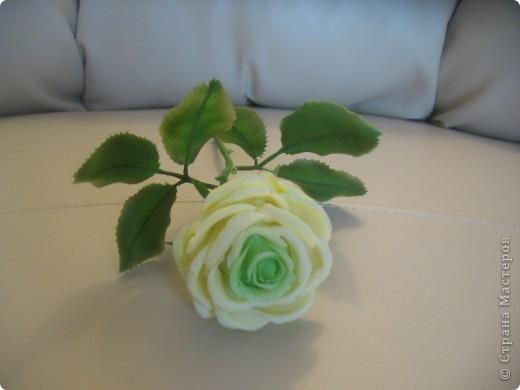 Ещё один цветочек для букета фото 2