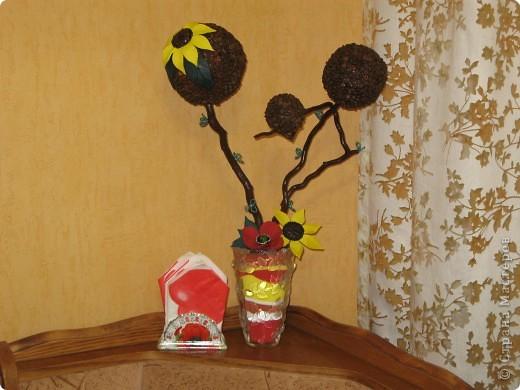 Кофейный топиарий (маково-подсолнуховый) подходит под общий дизайн кухни. фото 1