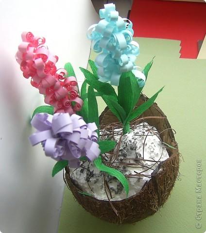 Зашла на днях в цветочный магазин, а там уже весна. И гиацинты цветут и там мне захотелось. фото 3
