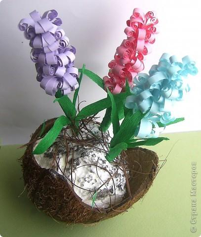 Зашла на днях в цветочный магазин, а там уже весна. И гиацинты цветут и там мне захотелось. фото 1