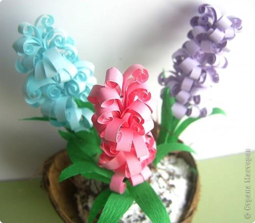 Зашла на днях в цветочный магазин, а там уже весна. И гиацинты цветут и там мне захотелось. фото 4