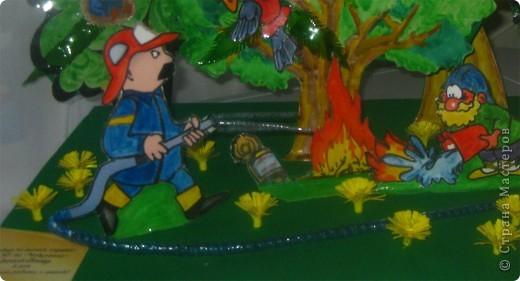 """Пожар на лесной опушке"". фото 5"