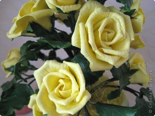 На конец то я сделала что то похожее на розы, до этого это было лишь подобие, мне не нравилось. фото 2