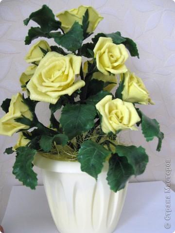 На конец то я сделала что то похожее на розы, до этого это было лишь подобие, мне не нравилось. фото 1