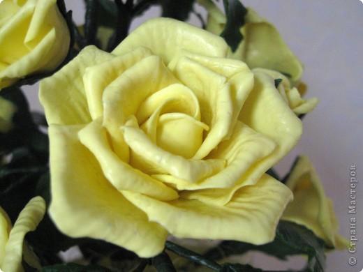 На конец то я сделала что то похожее на розы, до этого это было лишь подобие, мне не нравилось. фото 5