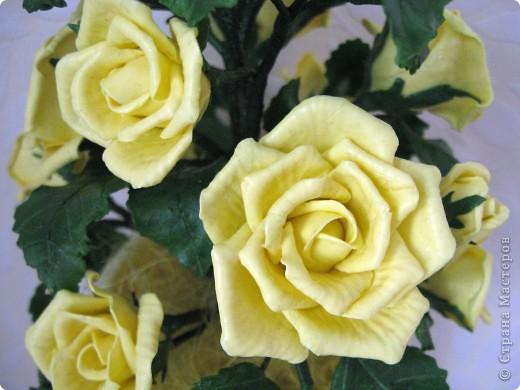 На конец то я сделала что то похожее на розы, до этого это было лишь подобие, мне не нравилось. фото 3