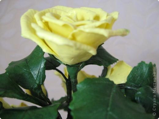 На конец то я сделала что то похожее на розы, до этого это было лишь подобие, мне не нравилось. фото 4