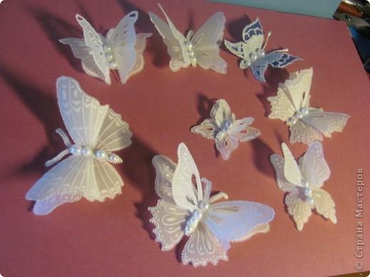 Бабочки своими руками из бумаги красивые мастер класс 14