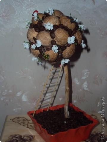 Поделки из грецких орехов своими руками фото