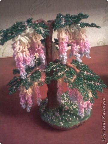 Глициния моё первое бисерное дерево