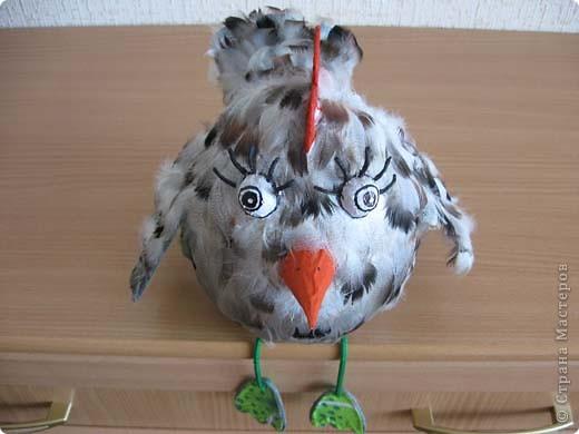 Вот такая птаха у меня вылупилась на днях, даже сама не пойму не-то курица, не-то просто птица!  фото 3