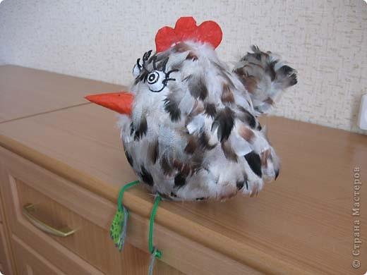 Вот такая птаха у меня вылупилась на днях, даже сама не пойму не-то курица, не-то просто птица!  фото 1
