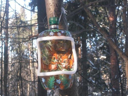 Поделка изделие Рисование и живопись Кормушки для птиц Бутылки пластиковые Клей Пеноплен фото 1