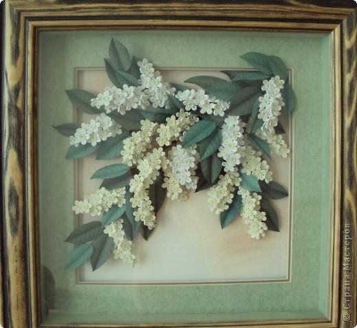 Картина панно рисунок Квиллинг Черёмуха и др Бумага фото 1