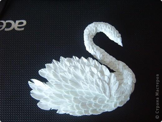 Оригами из бумаги - как сделать лебедя, схемы для 100