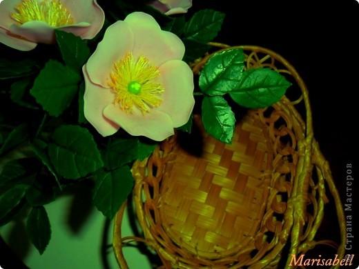 У меня появился вот такой букет из цветущих веток шиповника. фото 6